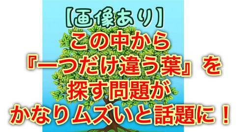 8106cd73-s.jpg