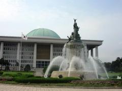 韓国国会 放置していた「日本原産の木」を撤去へ「桜は?」