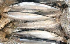 サンマ1尾100円水準まで値下がり 漁本格化で築地に入荷増