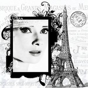 paris-1113194_640