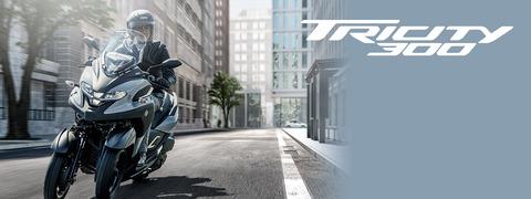 tricity300_index_key_2020_pc