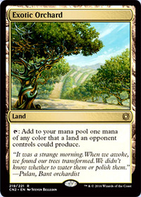 Exotic-Orchard