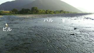 川は気持ちいぃ〜