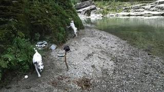 懐かしい秘密の川