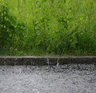 のほほん 雨