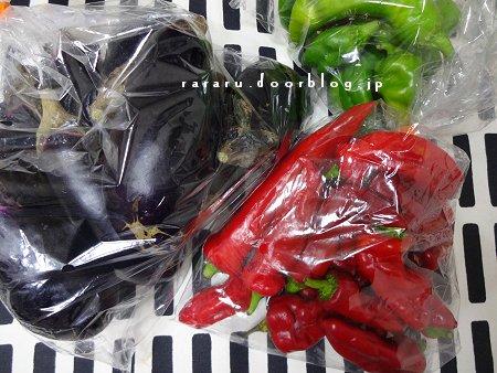 のほほん 100円 農家の軒販売野菜