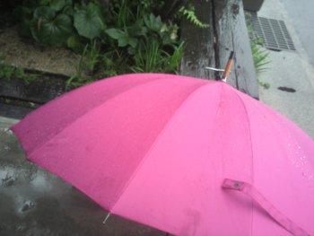 のほほん 傘