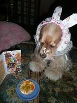お誕生日カードとケーキ