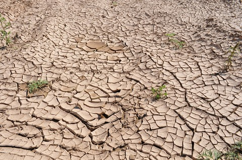 drought-19478_1280