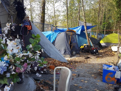 MEG_Homeless Camps and fire codes_1