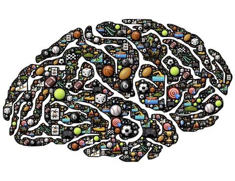 brain-954817_1280