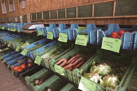 BIJ_New Commons Farming_4