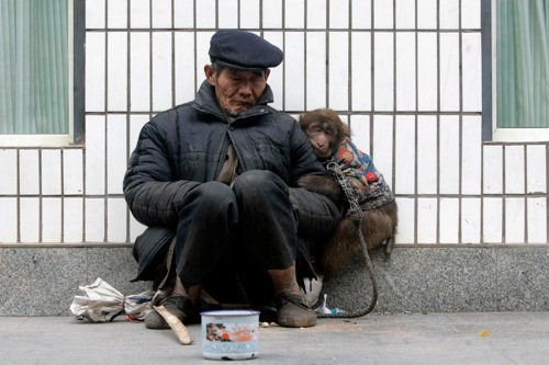 China beggar naps with his monkey on street in chongqing municipality rtxc0ei