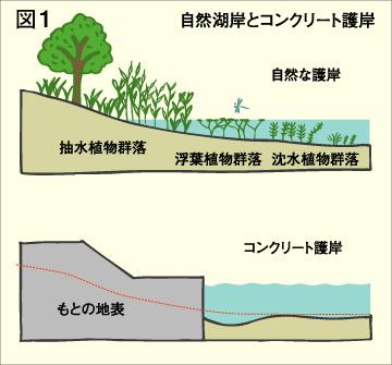 P15 図1