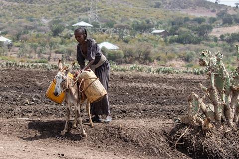 ethiopia-4117617_1280