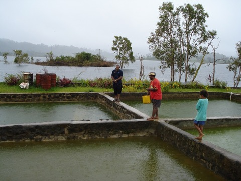 IPS_Fish farming takes on crime_1