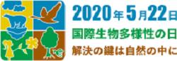 idb-2020-logo-jp-75ht