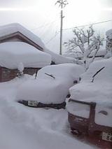 20060104雪の朝1