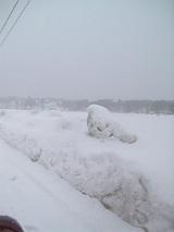 20060211吹雪模様1