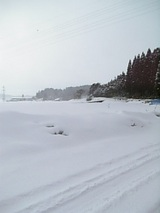 20060314雪の山3