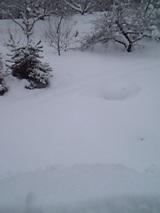 20051225雪降ろし2
