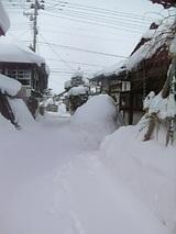 20060104雪の朝3