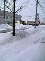 20050118東通2