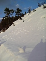 20060218雪の山の斜面2