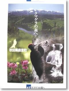 2001020415クマゲラの森