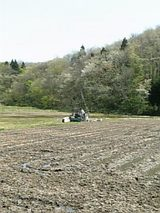 20060509春の山