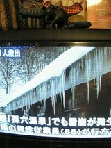 20060210乳頭温泉雪崩