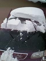 20051212雪をかぶった車
