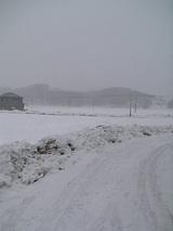 20060217山雪景色1