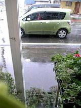 20060420大粒の雪が