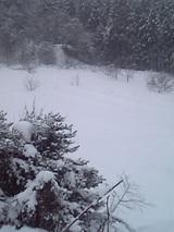 20051225雪降ろし1
