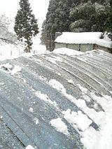 20060211ハウスの雪2