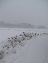 20060119雪景色