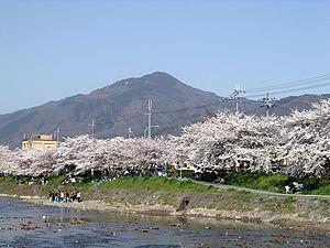 300px-Sakura_MtHiei