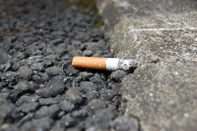 ヤニカス「俺たちを悪者扱いするな!タバコ規制止めろ!」←せめてそこら中に落ちてる吸い殻を無くしてから言ってね^_^