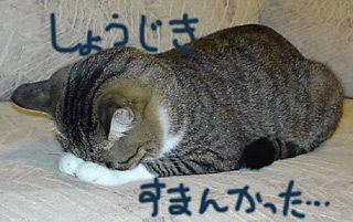 126_5