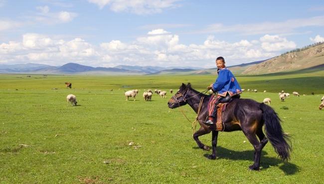 神社の事件で鎮静化してきたし、モンゴルの良さについて普及する