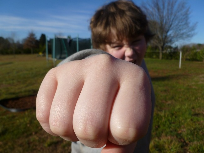 fist-bump-933916_960_720