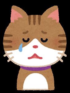 cat3_cry