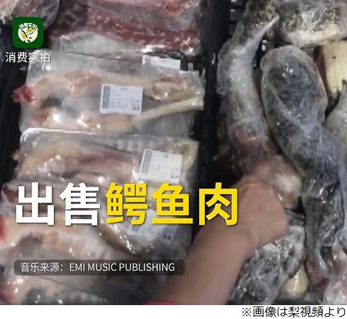 スーパーに野生のワニ出没、すぐに捉えられ解体、肉として売られる