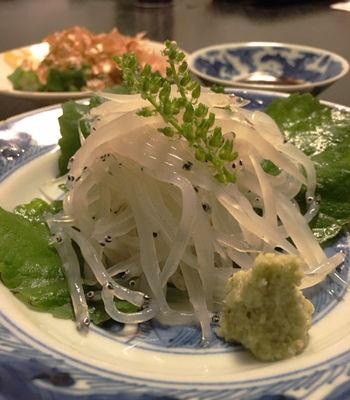 銚子 白魚