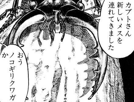【蟲姦注意・エロ漫画】カブトムシさんが異種姦罪で現行犯逮捕されるwwwwwwwwwwwwwww