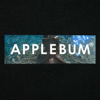 APPLEBUM-BEACH-BOX-T-SHIRT-BLACK-BLOG2