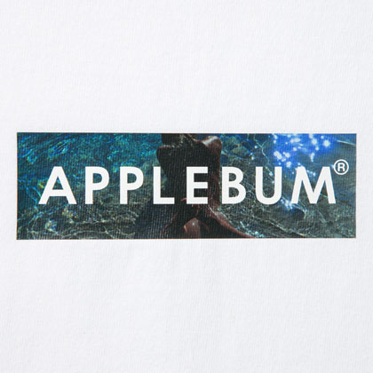 APPLEBUM-BEACH-BOX-T-SHIRT-WHITE-BLOG2