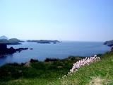 アイルランド海