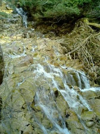 白滝はナメてます